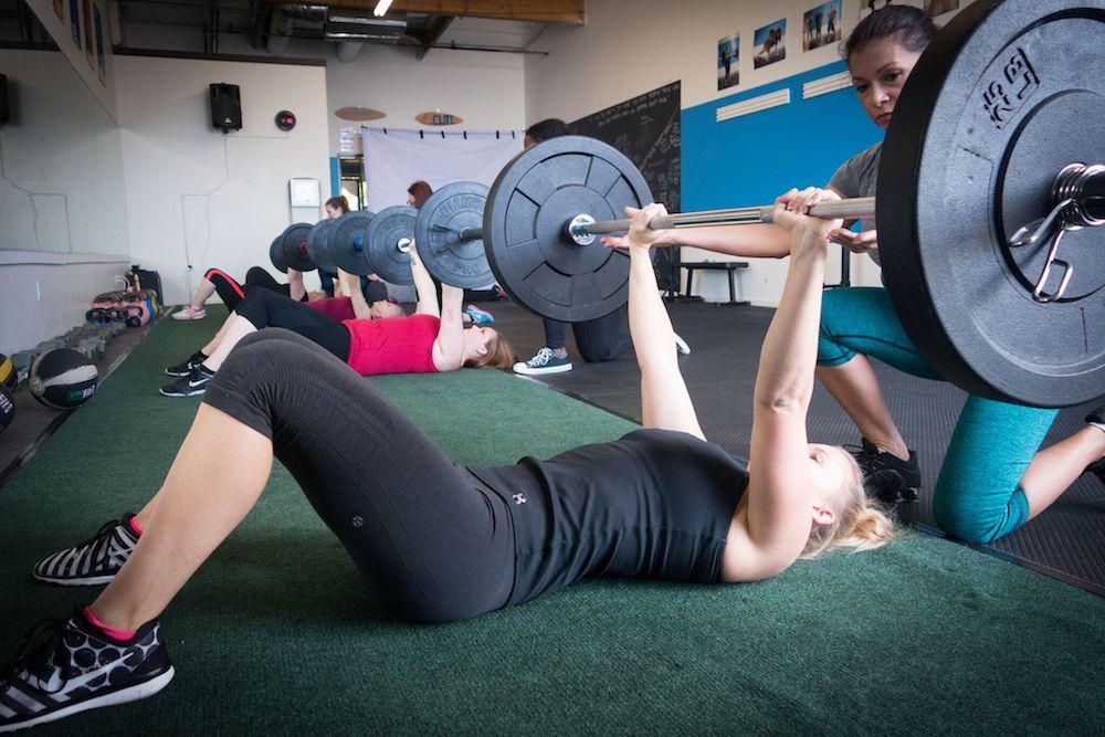 curvy fitness