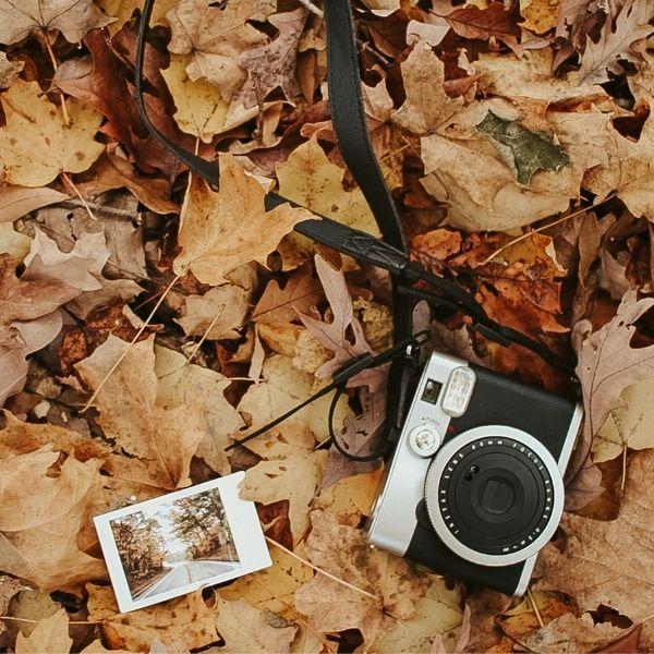 DIY Season: 7 Fun Hobbies To Try This Fall